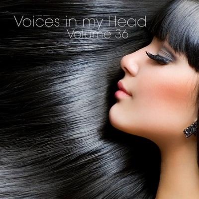 VA - Voices in my Head Volume 36 (2012)