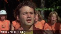 Фрикадельки / Meatballs (1979) BD Remux + BDRip 1080p / 720p + HDRip