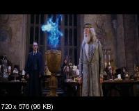 Гарри Поттер и кубок огня / Harry Potter and the Goblet of Fire (2005) DVD9 + DVD5 + DVDRip
