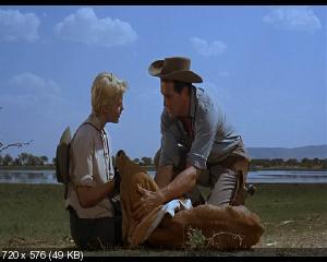 Последний закат / The Last Sunset (1961) DVD9