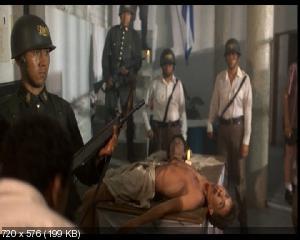 ��������� / Salvador (1986) DVD9 + DVD5