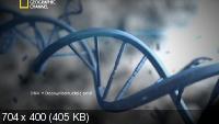 National Geographic. Криминалистическая лаборатория / Crime Lab (2012) SATRip