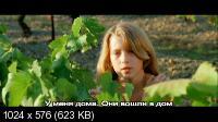 Галльские патроны / Cartouches gauloises (2007) DVD9