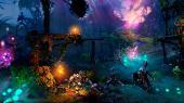 Trine 2: Триединство. Collector's Edition [2011] Steam-Rip от R.G. Игроманы