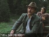 Карпатское золото (1991) DVDRip