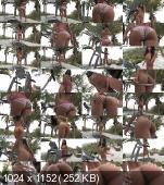 Cindy Starfall - Go Pho a Wok #706 (2012/HD/720p) [InTheCrack] 1648,09 MB