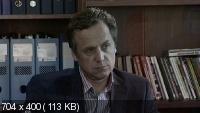 Адвокат 8. Продолжение (2012) SATRip