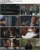 Czas Honoru [S05E02] (2012) PL.WEBRip.XviD-TR0D4T