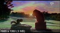 Флюк / Fluke (1995) HDTV 1080i + HDTVRip