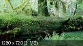 Я – Легенда / I Am Legend (2007) BDRip-720p | Дополнительные материалы