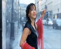 Любовь с препятствиями / Un bonheur n'arrive jamais seul (2012) BDRip + DVD + HDRip