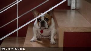 �������� �������� [4 �����] / ������������ ������� / Modern Family (2012) WEB-DL 720p + WEB-DLRip